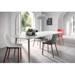 Išskleidžiamas stalas OAKLAND 160(260)x100 cm