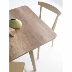 Išskleidžiamas stalas DINE 120(170)x80