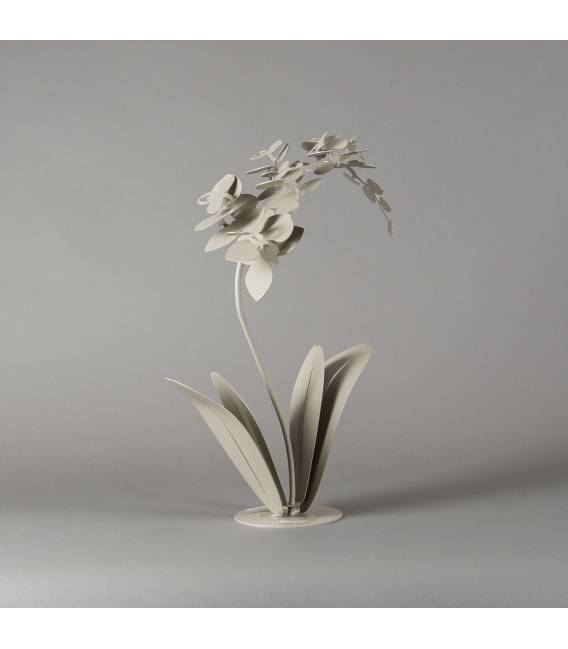 Dekoracija Orchidea 33x58