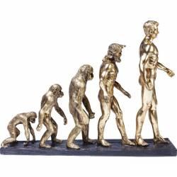 Dekoracija EVOLUTION