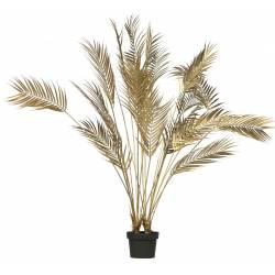 Dekoratyvinis augalas PALM GOLD H110