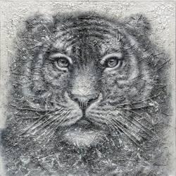 Paveikslas GREY LION 120x120