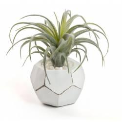 Dirbtinė gėlė TILLANDSIA