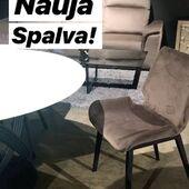 Nauja kėdžių CLARA spalva! 😍👌Užsukite pamatyti P. Lukšio g.19 Accanto baldų salonas✨#accantobaldai #baldai #baldaiinternetu #baldusalonas #baldudizainas #kėdė #valgomasis #valgomojobaldai #namams #idejosnamams #spalva #rudaspalva #aksomas